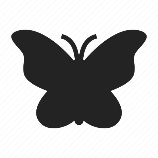 butterfly, freedom, light icon