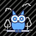 education, owl, wisdom