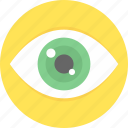 look, search, view icon