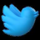 app, twitter, tweet, bird, animal, network, social media