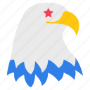 american bird, american eagle, falcon, hawk, national bird icon