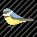 animal, bird, entertainment, park, rest, tit icon