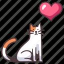 cat, animal, pet, love, cute, happy, feline