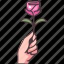 rose, flower, romantic, love, floral, romance, valentine