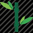 bamboo, logo, plant icon