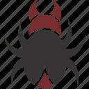 beetle, bug, insect, logo