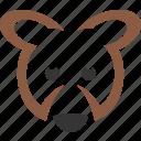 animal, bear, brown, logo