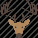 deer, horns, logo, zoo