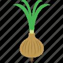 logo, onion, plant icon