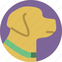 accommodation, allowed, dogs, hotel, service, service icon, services icon