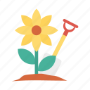 activity, gardening, plant, sunflower icon