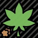 cannabis, drug, illegal, leaf, marijuana, pot, weed