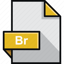 adobe, br, bridge, extension, file, format, software icon
