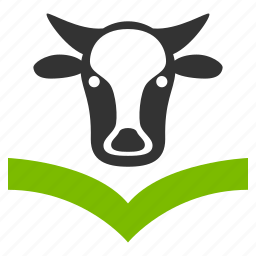 bull, cattle, cow, education, knowledge, livestock, study icon