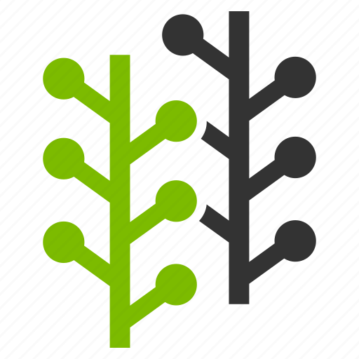 ecology, flora, floral, natural, nature, plants, spring icon