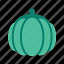 agriculture, farm, farming, organic, pumpkin icon