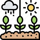 climate, weather, temperature, growth, condition
