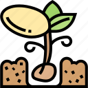 sprout, plant, grow, seedling, environment