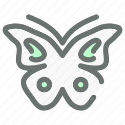 butterfly, flutter, insect icon