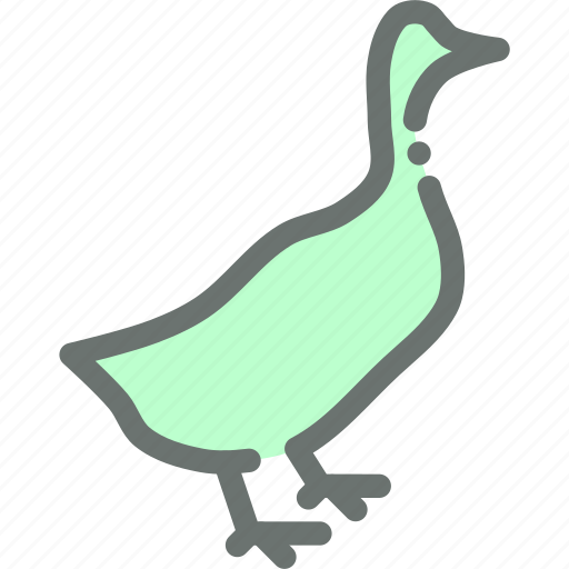 bird, duck, farm, poultry icon