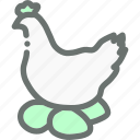 chicken, egg, eggs, farm, hen, poultry icon