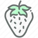 berry, fruit, healthy, strawberry icon