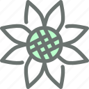 blossom, flower, garden, gardening, sunflower icon