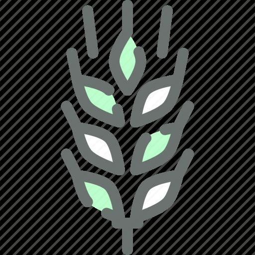 barley, crop, cultivate, gluten, grain, wheat icon