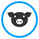 hog, pig head, piggy, pork, snout, sow, swine icon