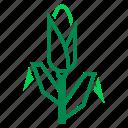 corn, crop, farm, farming, maize, organic, plant icon