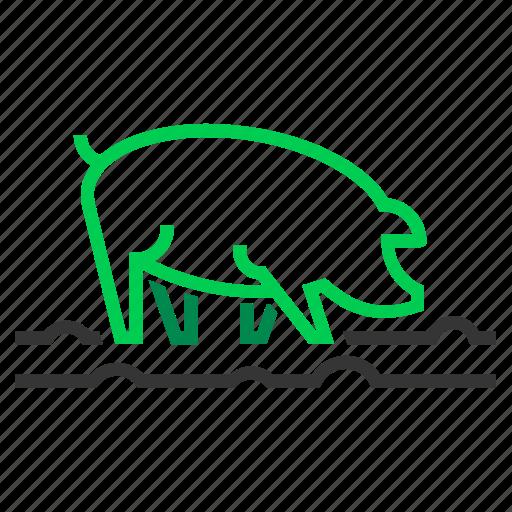 farm, mud, pig, piggy, pigsty, pork icon