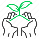 care, farmer, harvest, organic, plant, planting, seedling icon