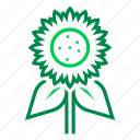 farming, flower, gardening, natural, organic, sunflower icon