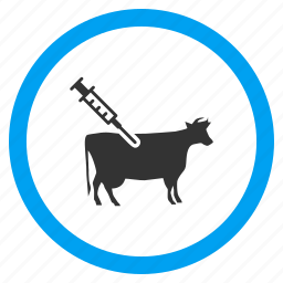 cattle, cow vaccination, injection, medical needle, medicine, syringe, vaccine icon