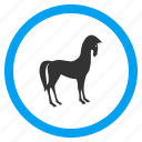 animal, courser, horse, hoss, mustang, pony, steed