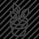 house, plant, pot icon