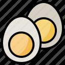 and, boiled, egg, food, organic, restaurant