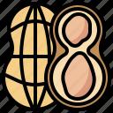 food, nut, peanut, peanuts, restaurant, salty, snack icon