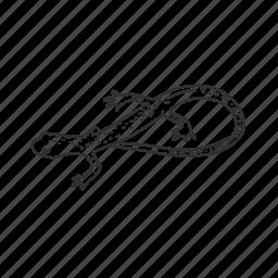 amphibian, cave salamander, salamander icon