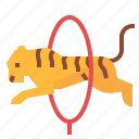 animal, tiger, wild, wildlife, zoo icon