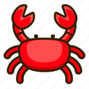 beach, crab, animal, seafood