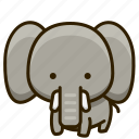 mammal, elephant, animal, zoo