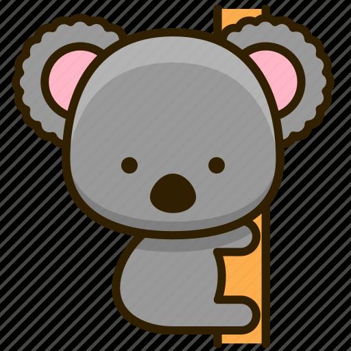 Animal, koala, nature, zoo icon - Download on Iconfinder