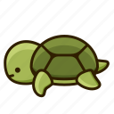 turtle, animal, tortoise, pet