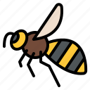 animal, bee, life, wild, zoo icon