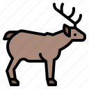 life, deer, animal, zoo, wild icon