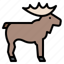 animal, life, moose, wild, zoo icon