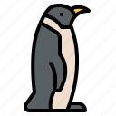 life, penguin, animal, zoo, wild