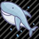 animal, sea, shark icon