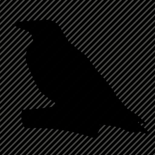 #bird, #freedom, animal icon
